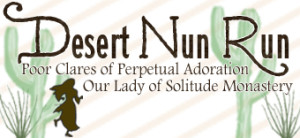 Desert Nun Run 2016